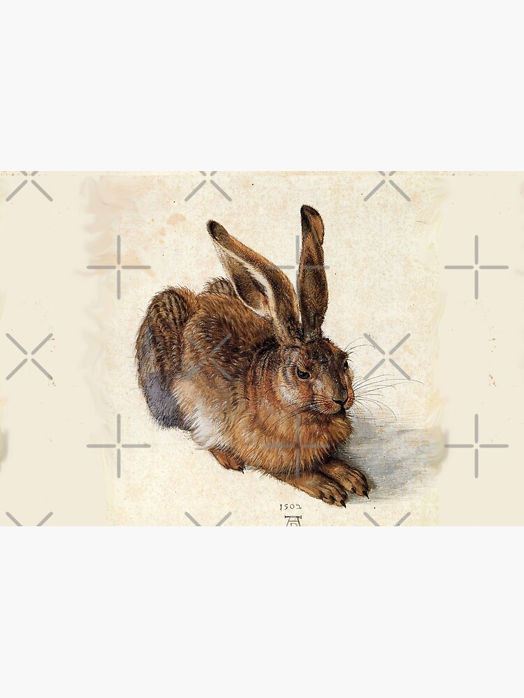 RABBIT - YOUNG HARE Antique Animal Drawings by BulganLumini