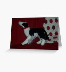 Knitted Collie Greeting Card