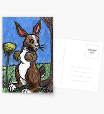 Rabbit In The Forest Postcards