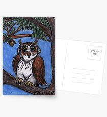 Owl In The Forest Postcards