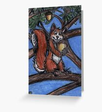 Squirrel In The Forest Greeting Card