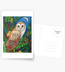 White Heart (Portrait of a Barn Owl) Postcards
