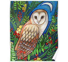 White Heart (Portrait of a Barn Owl) Poster