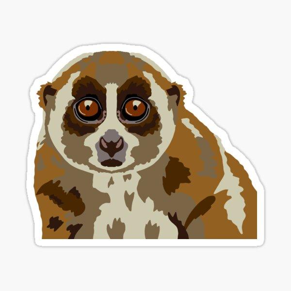 Slow Loris Portrait Sticker