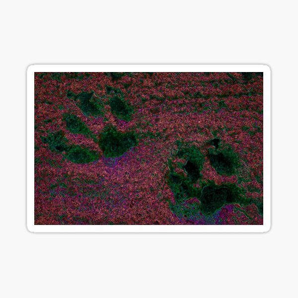 Paw Prints Red and Green Sticker