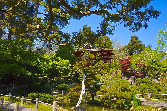 Pagoda in the Garden by Barbara  Brown