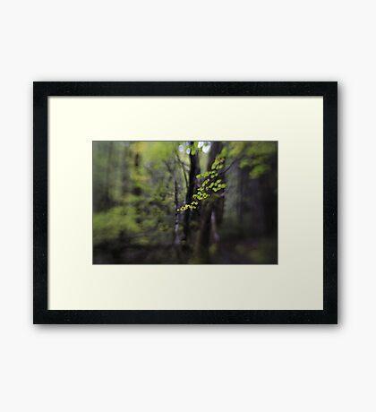 Hounslow Framed Print