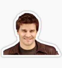 David Boreanaz Sticker
