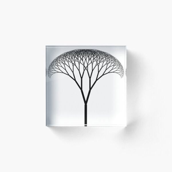 Fractal is a Self-Similar Subset of Euclidean Space Acrylic Block