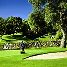Valderrama Golf Club by Kent DuFault