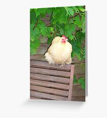 Lemon-Buff Pekin Bantam Greeting Card