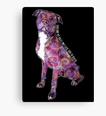 Pit Bulls May Lick You To Death Canvas Print