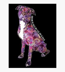 Pit Bulls May Lick You To Death Photographic Print