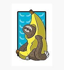 Banana Sloth Photographic Print