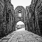 Arbroath Abbey Ruins Scotland by mlphoto