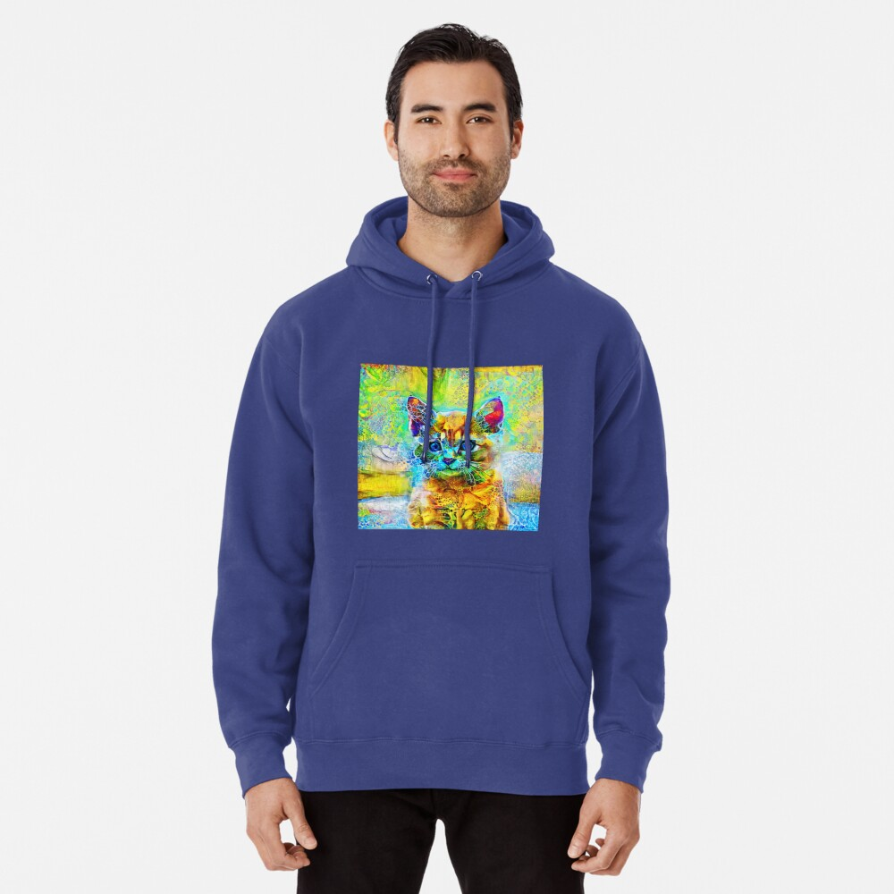 Abstractions of abstract abstraction of cat Pullover Hoodie