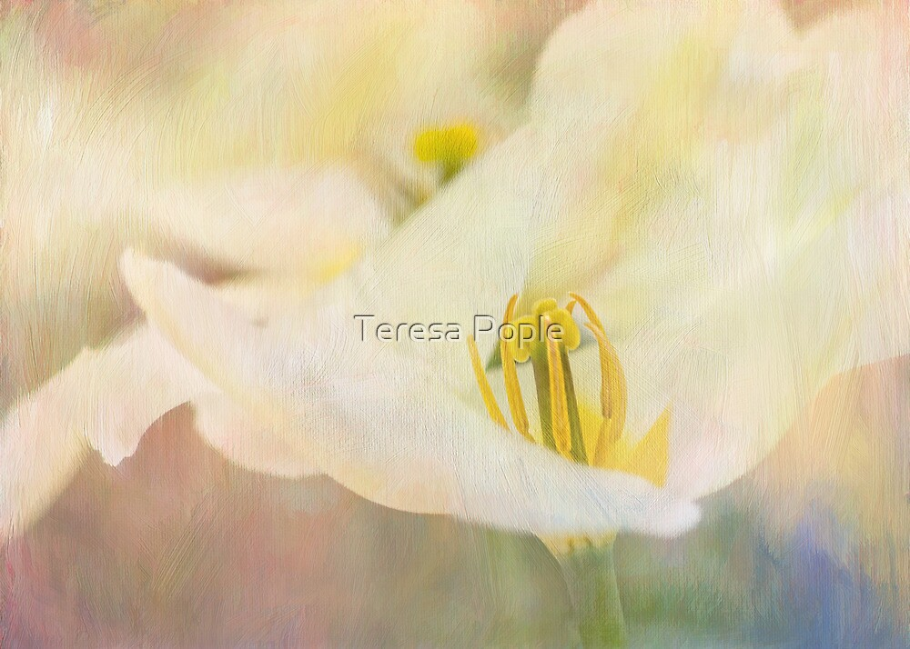 impressions by Teresa Pople