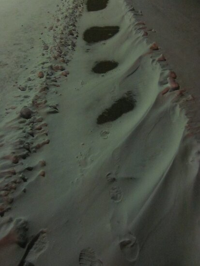 Place Snow In My Path by Guy Ricketts