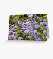In the lovely violet fields we daydreamed and watched the clouds go by Greeting Card