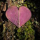 Tree Heart 2 by Zero Dean