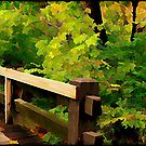 Nature Walk © by Dawn Becker