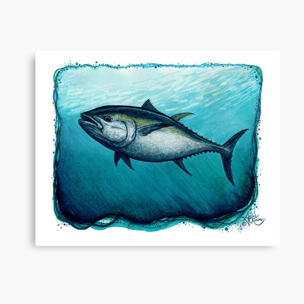 """""""Bluefin Tuna"""" by Amber Marine ~ Watercolor painting, art © 2016 Canvas Print"""