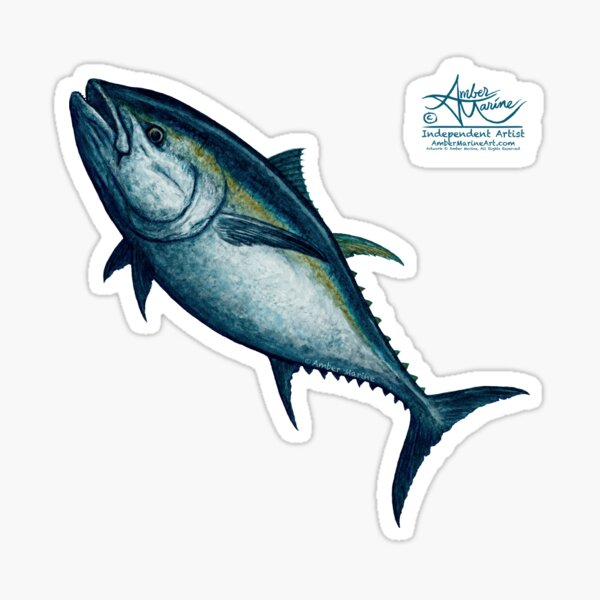 """""""Bluefin Tuna"""" by Amber Marine ~ Watercolor painting, art © 2016 Sticker"""