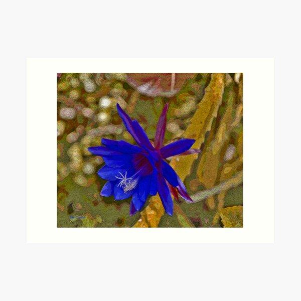 The Purple Epiphyllum Art Print