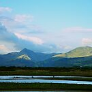 Pure Welsh Mountains by Designer023