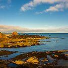 Bass Rock from Dunbar Scotland by mlphoto