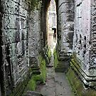 Within Angkor by signaturelaurel