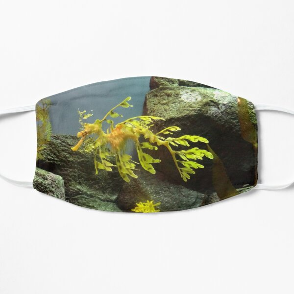 Leafy Sea Dragon with Rocks Flat Mask
