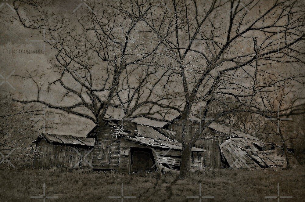The Homestead by Scott Mitchell