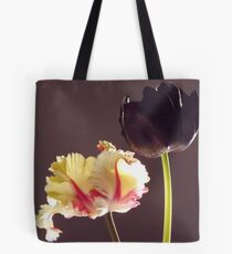 Sunset Light Through the Window Tote Bag