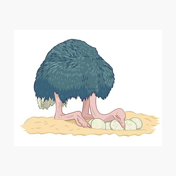 Ostrich Mama Photographic Print