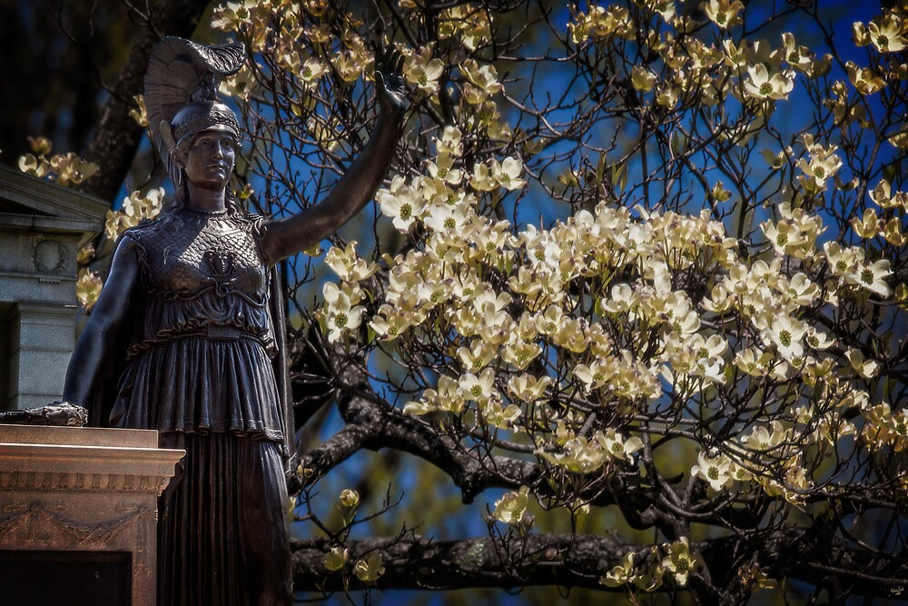 Hail My Lady of Dogwoods by Chris Lord