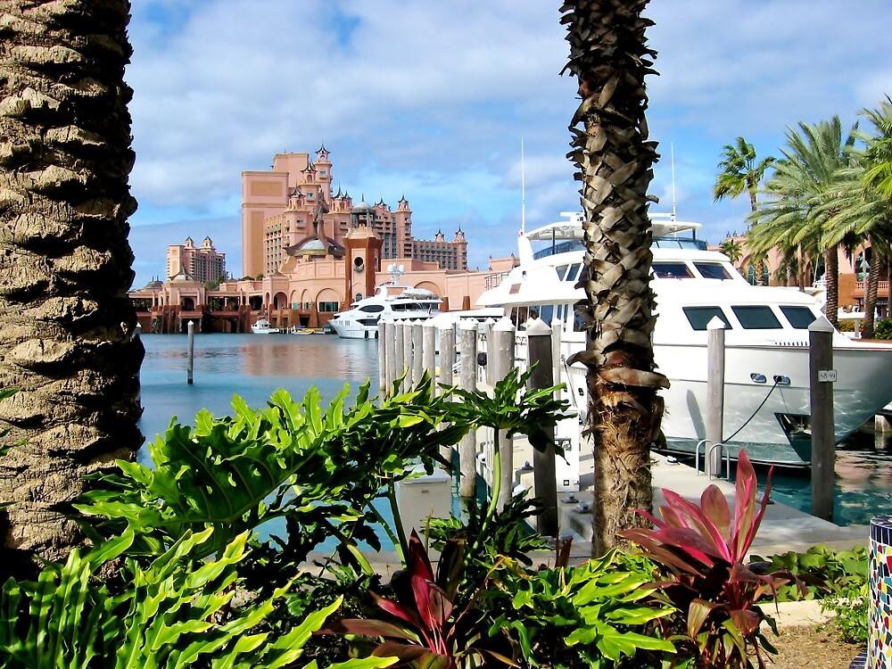 Atlantis Paradise Island, The Bahamas by Ginger  Hamilton