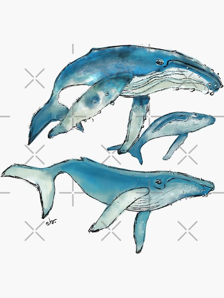 Humpback whale family by ebozzastudio