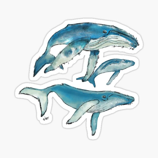 Humpback whale family Sticker