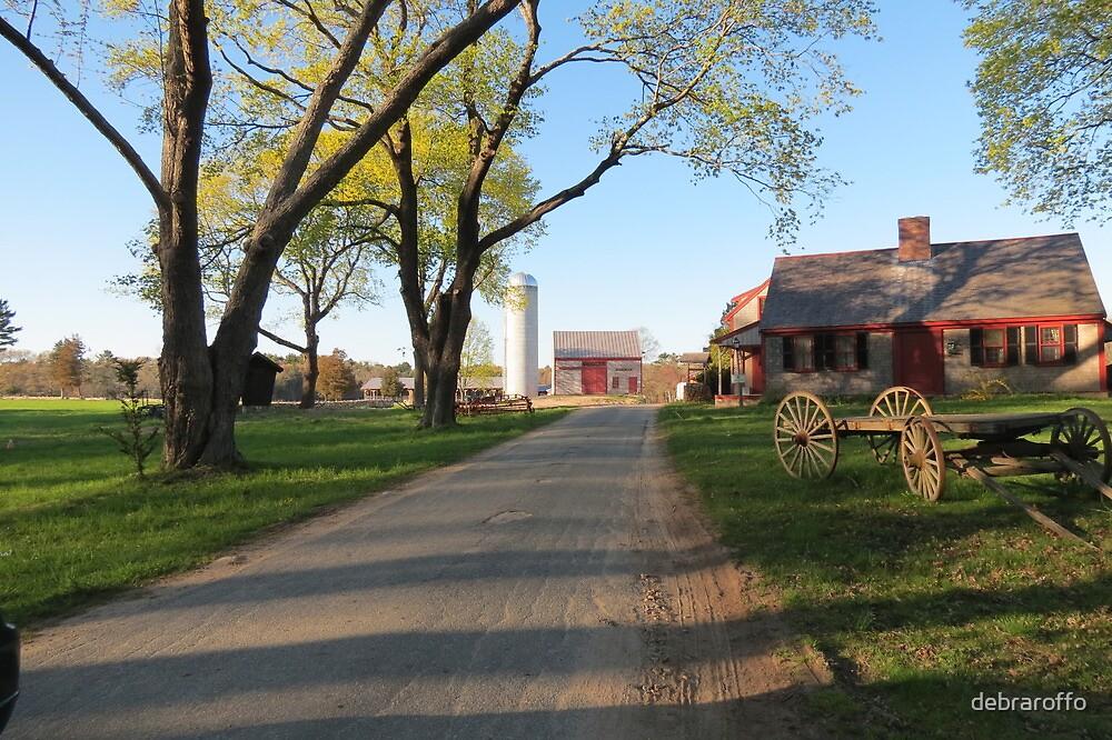 Spring,on Hornstra Dairy Farm by debraroffo