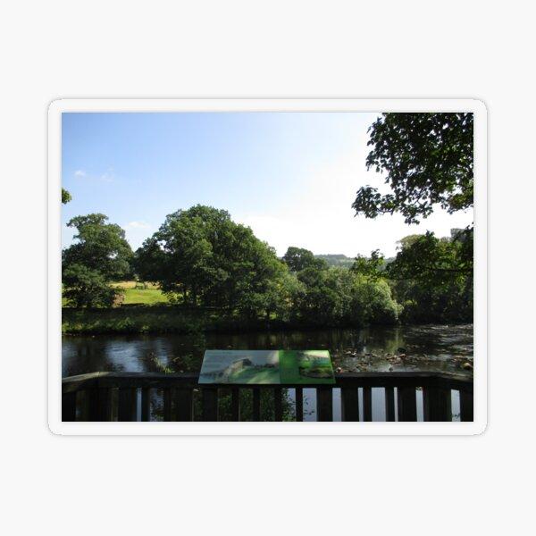 Merch #93 -- Chesters Bridge Board - Distant Shot (Hadrian's Wall) Transparent Sticker