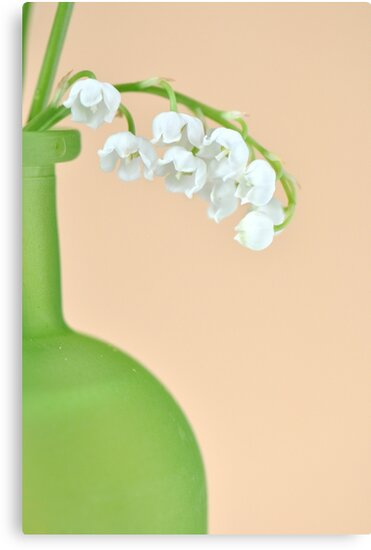 Lily of the Valley... take 2 :) by Denitsa Prodanova