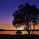 Sunrise silhouette by Len  Gunther