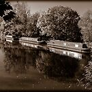 Moored Canal Boats England by mlphoto