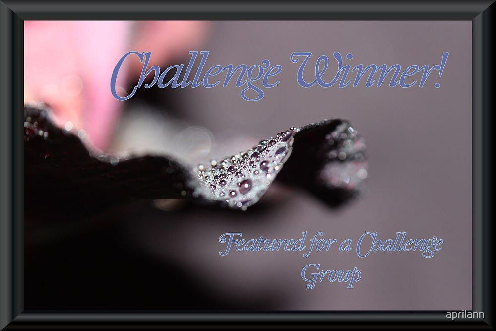 Banner - FFAC - Challenge Winner by aprilann