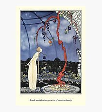 Old French Fairy Tales: A Tree of Marvelous Beauty Photographic Print