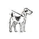 Dog Sketch by Lindsey Butler