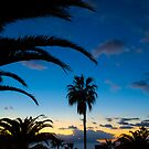 Sunset in Tenerife by Thomas Tolkien