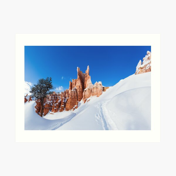Bryce Tree Surfing Art Print