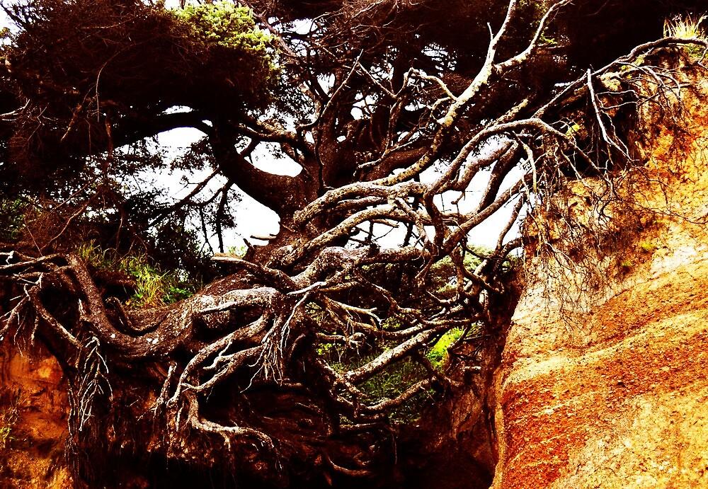 Roots that Still Live by Sarah Ella Jonason